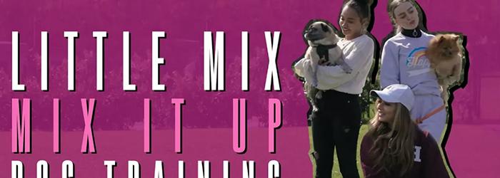 [VIDEO] Mix It Up: Dog Training #LittleMixMixItUp